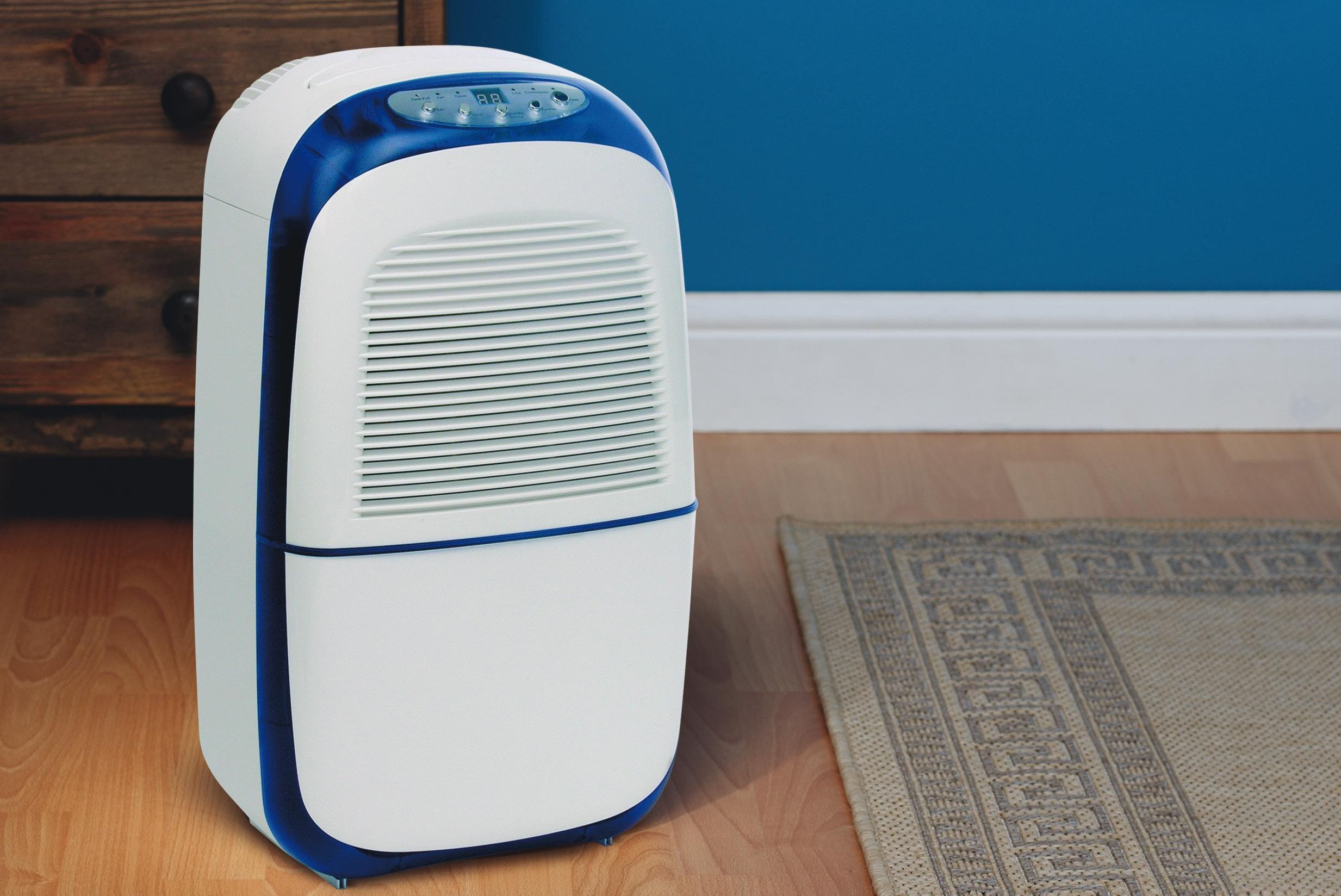 Image result for Dehumidifiers